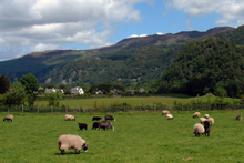 The view of surrounding Borrowdale fells from Hollows Farm